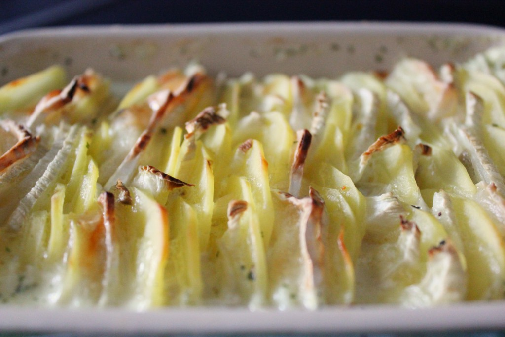 Fennel potato gratin - Gourmet Elephant